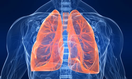 What is Respiratory Physiotherapy